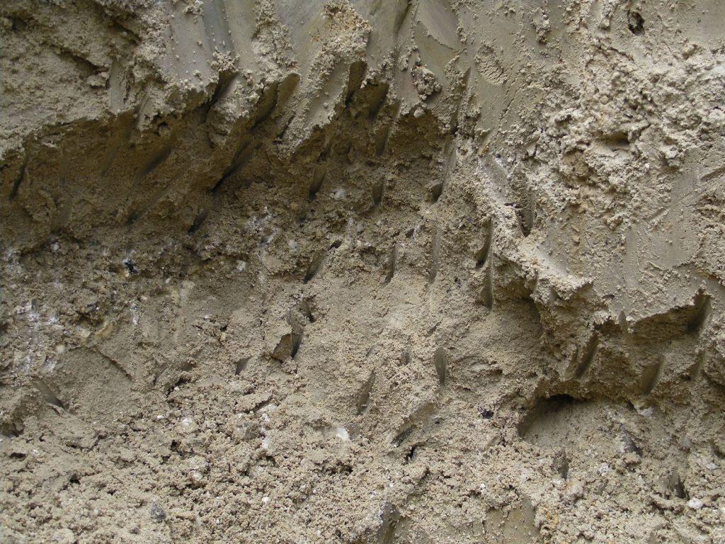 Modavite Excavation